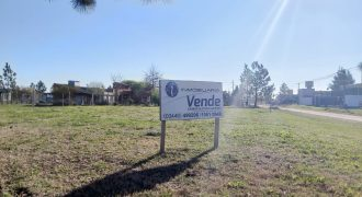LOTE 1000 M2